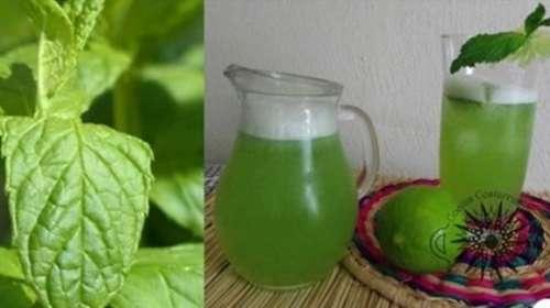Hierbabuena con limón